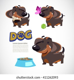 cute dog in various action, dog with butterfly, dog with tennis ball, dog with bone and food. character design. typographic. dachshund - vector illustration