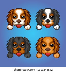 Cute dogs cavalier king charles spaniel heads pixel art avatar illustration