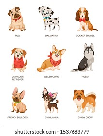 Cute dogs. Furry human friends home animals different breed pug, labrador and husky. Funny pets, happy puppies cartoon vector friendly comic doggy characters