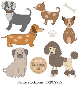 Cute dogs set. Vector illustration