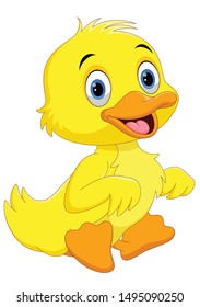 Cute duck cartoon isolated on white background