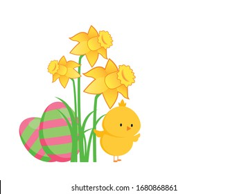 Cute easter chick with painted eggs and daffodils vector. Easter greeting card with copy space for text. Pink and green easter eggs with yellow daffodils vector. Baby adorable chicken vector