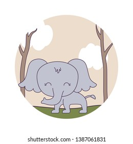 cute elephant animal in forest