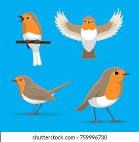 Cute European Robin Cartoon Vector Illustration