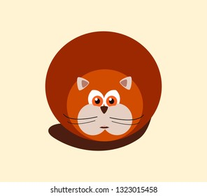 cute fat round red cat with big eyes and