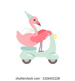 Cute Flamingo Riding Scooter Wearing Party Hat, Beautiful Exotic Bird Character Vector Illustration