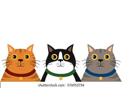 cute flat colorful cat portrait  pattern on white  background