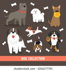 cute flat vector character design dog breed collection,Pitbull terrier,Puddle,Beagle,St Bernard,jack Russell Terrier,Bernese Mountain Dog with bone object