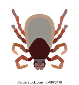 cute flea cartoon vector