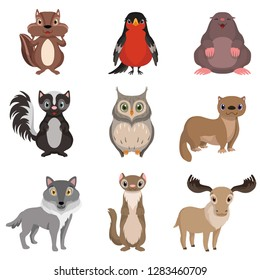 Cute forest animals and birds set, chipmunk, bullfinch, mole, cheerful, owl, polecat, raccoon, deer, wolf cartoon characters vector Illustration