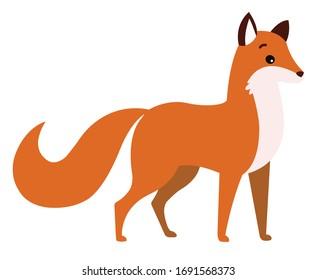 Cute fox vector illustration.Children book forest animal illustration.