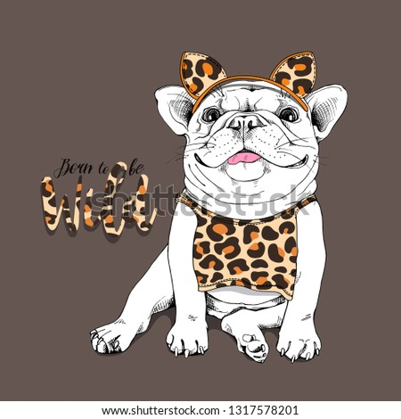 23e1959ae6942 Cute French bulldog in a costume of a leopard with a spots. Born to be wild  - lettering quote. Humor t-shirt composition