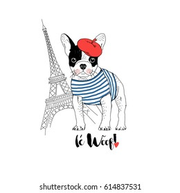 cute french bulldog dressed up in french chic style, hand drawn graphic, animal illustration