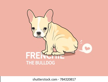 Cute French Bulldog Puppy and a Little Fart