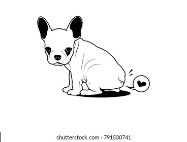Cute French Bulldog Puppy and a Little Fart in Black & White
