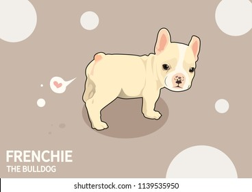 Cute Frenchie The Bulldog Fart Of Love. French bulldog puppy stand and look back at you and then show you how he love you in his style.