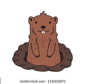 Cute friendly groundhog looking out from the burrow on white background. Groundhog day. Line vector illustration. Colored cartoon style, isolated.