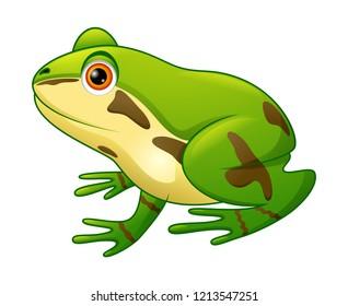 Cute frog cartoon illustration vector