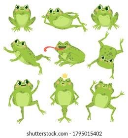 Cute frogs. Green funny frogs in various poses, happy animals group. Smiling active toads, zoo carnivore cartoon vector characters. Cartoon amphibian happy, animal princess toad illustration