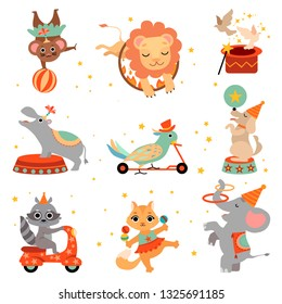 Cute Funny Animals Performing in Circus Show Set, Animal Jumping Through Flaming Hoop, Juggling, Balancing Vector Illustration