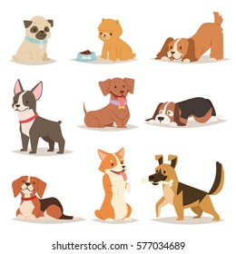 Cute funny cartoon dogs vector puppy pet characters different breads doggy illustration. Furry human friends home animals
