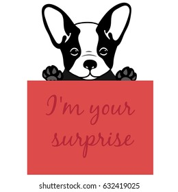 Cute and funny cartoon  puppy French bulldog with place for text. Character three happy puppies. Vector illustration