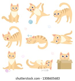 Cute funny cat in different situations. Playful domestic cat is sitting, playing with a ball, scares, sleeps, lies, sad, overeat, hiding in a box. Collection of isolated illustrations