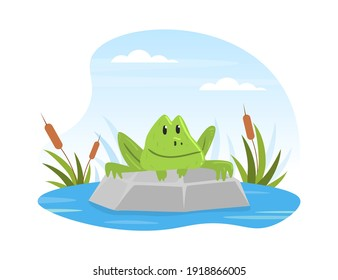 Cute Funny Frog in Summer Pond, Scene with Frog Sitting on Stone Cartoon Vector Illustration