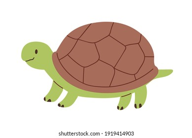 Cute and funny green turtle with brown shell. Side view of happy tortoise character standing isolated on white background. Childish colored flat vector illustration