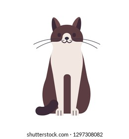 Cute funny happy cat isolated on white background. Domestic animal or pet. Adorable sitting kitty or pussycat, pretty lovely furry friend. Colorful vector illustration in flat cartoon style.