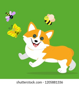 Cute funny puppy running to dragonfly, bee and butterfly. The welsh corgi. Vector illustration in cartoon style. Funny character for baby design.