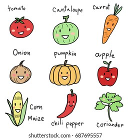 Cute and funny smiling fruit and vegetable icons such as tomato, cantaloupe, carrot, onion, pumpkin, apple, corn, chili pepper, coriander. Vector illustration with hand-drawn style.