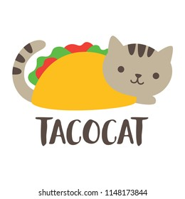 Cute and funny taco cat vector illustration.