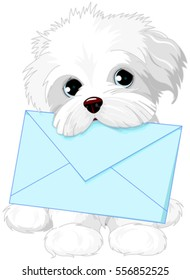 Cute fuzzy dog delivering mail envelope