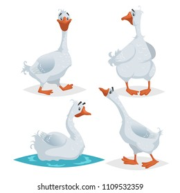 Cute geese in different poses. Cartoon flat style farm animals  birds collection. Walking, standing, swimming goose. Vector illustration isolated on white background.