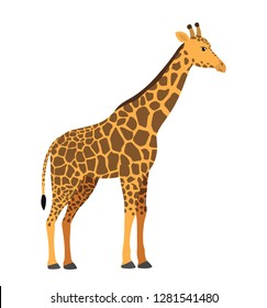 Cute giraffe vector illustration isolated on white eps 10