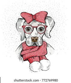 Cute Girl Dog in a winter scarf and red bow on its head. Pedigree dog. Labrador. Vector illustration for a postcard, poster, print for clothes or accessories. New Year's and Christmas.