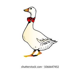 Cute goose vector flat illustration isolated on white background. Farm animal goose cartoon character