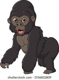 Cute gorilla cartoon isolated on white background