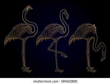 Cute graphic flamingo in the side view. Pretty exotic birds isolated on black background. T-shirt print or tattoo design