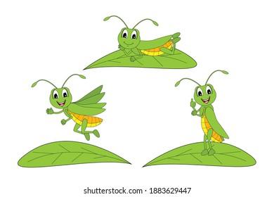 cute grasshopper animal cartoon, simple vector illustration
