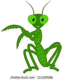 a cute grasshopper dance