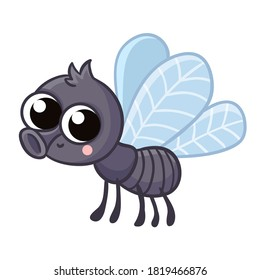 Cute gray fly on a white background. Vector illustration with insect on a white background.