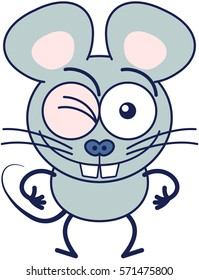 Cute gray mouse in minimalistic style with huge rounded ears, bulging eyes and big teeth while winking, smiling generously and making thumbs up