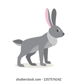 Cute gray rabbit hare isolated on white background, forest, woodland animal, vector illustration in flat style