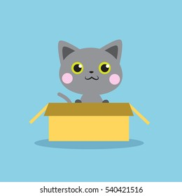Cute grey kitten in the box isolated vector illustration