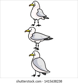 Cute group of seagulls cartoon vector illustration motif set. Hand drawn isolated seaside wildlife elements clipart for nautical birdwatching blog, bird graphic, feather web buttons.