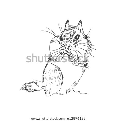 Cute Hamster Sketch Style Stock Vector Royalty Free 612896123