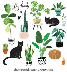 cute hand drawn doodle home exotic plants and black cat icon set