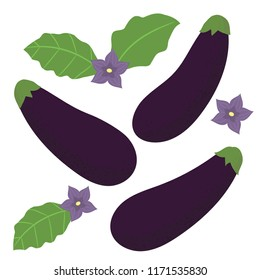 Cute hand drawn poster with eggplant vegetables. Eggplant with leaves and flowers. Vector illustration in flat design.
